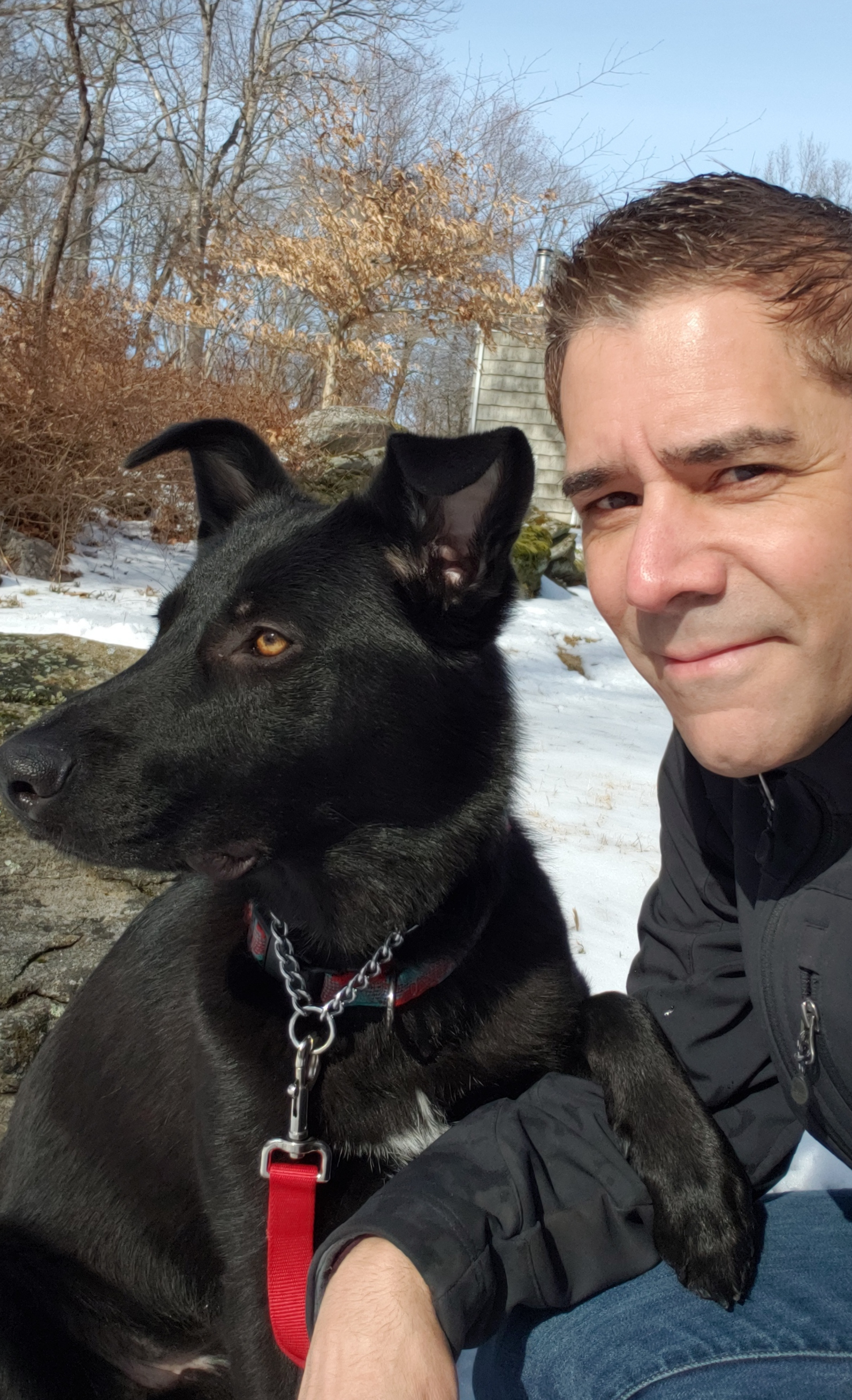 westchester ny dog trainer